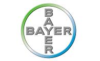 Csapatépítő tréningek Bayer